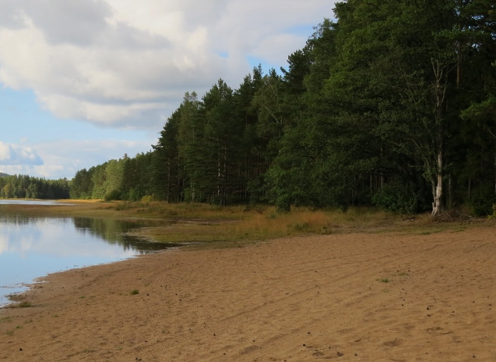 1 IMG_5197 Klockgentianalokalen vid Långasjön i Åker AB