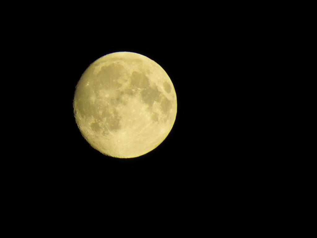 15 IMG_5265 Supermånen natten innan blodmånen nästan nä