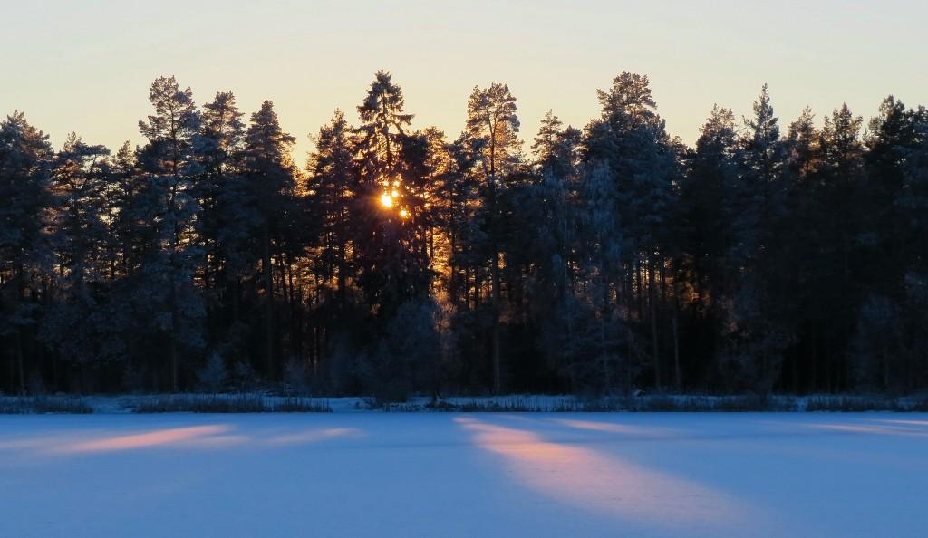20 IMG_6099 Solnedgång Fågelforsdammen 15_00 17_1-16