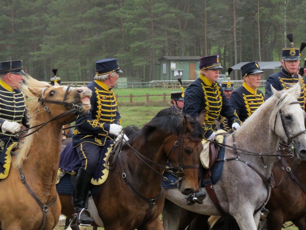 17 IMG_7090 Smålands husarer K4 https___sv.wikipedia