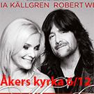 wellsofia_a3_skillingaryd-161206-135