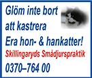 smadjur-kastrering-161204-18-135